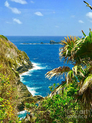 Photograph - Little Tobago  by Carey Chen