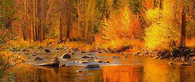 Photograph - Little Truckee River by Sherri Meyer