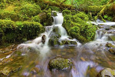 Photograph - Little Waterfalls Along Wahkeena Creek by David Gn
