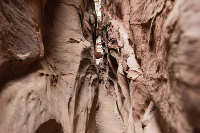 Photograph - Little Wild Horse Canyon Narrows by Jennifer Ancker