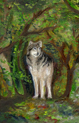 Painting - Little Wolf by FT McKinstry