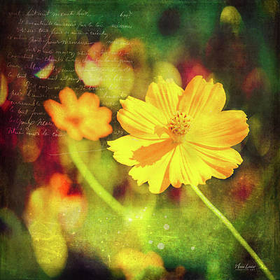 Photograph - Little Yellow Flowers by Anna Louise