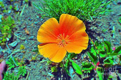 Photograph - Little Yellow Flowers by Mayhem Mediums