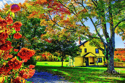 Photograph - Little Yellow House by Rick Bragan