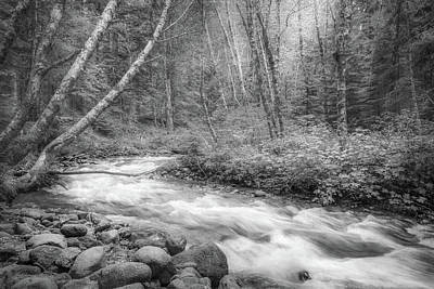 Photograph - Little Zig Zag Creek by Angie Vogel