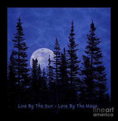 Photograph - Live By The Sun Love By The Moon by John Stephens