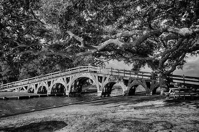 Photograph - Live Oak Bridge by Alan Raasch