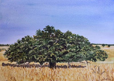 Painting - Live Oak by Christine Lathrop