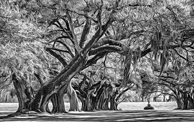 Plantation Photograph - Live Oak Journey 2 - Paint Bw by Steve Harrington