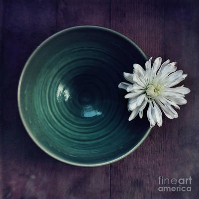 White Flower Photograph - Live Simply by Priska Wettstein