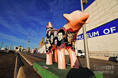 Scouse Photograph - Liverpool Uk 5th January 2017. Superlambanana Sculpture On Liverpool Waterfront. The Super Lamb Banana Sculptures Are Spread All Over The City by Ken Biggs