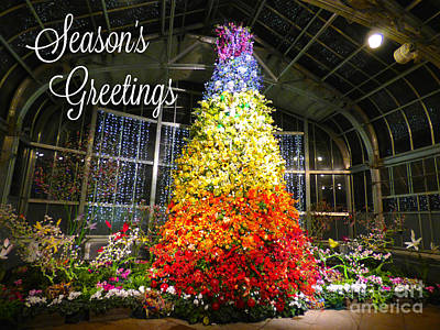 Photograph - Living Color Season's Greetings by Jean Wright