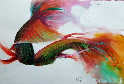 Betta Fish Painting   Living Colors By Betta Painter