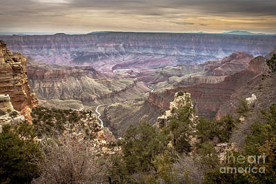 Photograph - Living Delta To The Rim by Robert Bales