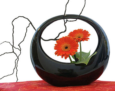 Photograph - Living Flowers - Ikebana by Nikolyn McDonald