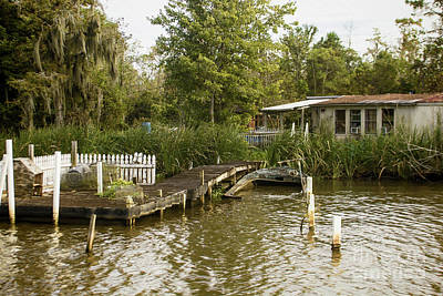 Photograph - Living In The Bayou by Steven Parker