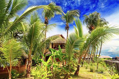 Photograph - Living On Isla Carenero Panama by John Rizzuto