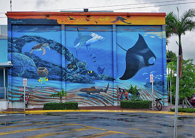 Photograph - Living Reef Mural by Farol Tomson