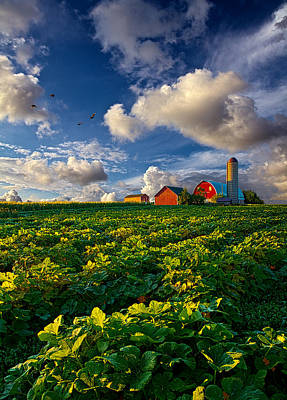 Crops Photograph - Living Wisconsin by Phil Koch