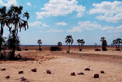 Photograph - Liwonde National Park by Dora Hathazi Mendes