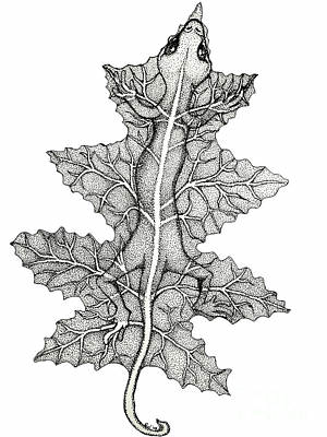 Reptiles Drawings - Lizard and leaf by Nick Gustafson