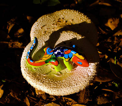 Photograph - Lizard And Mushrooms by David Lee Thompson