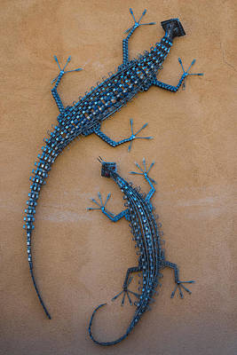 Photograph - Lizard Art by Gary Lengyel