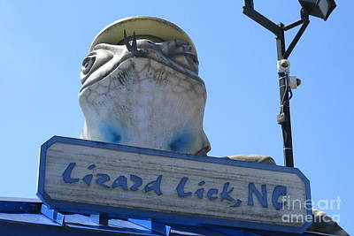 Photograph - Lizard Lick 1 by Randall Weidner