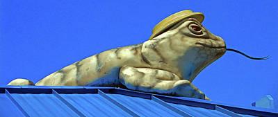 Photograph - Lizard Lick Atm 1 by Ron Kandt