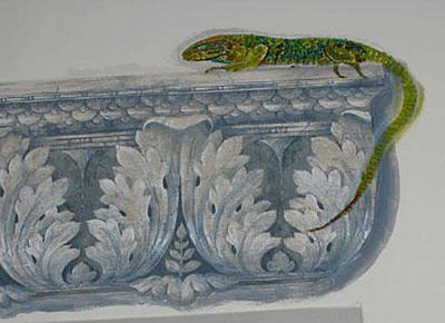 Dainty Daisies - Lizard by Richard Le Page