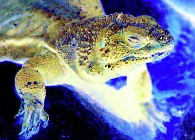 Digital Art - Lizard Rising by Ronald Irwin