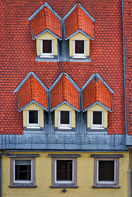 Photograph - Ljubljana Rooftop And Windows - Slovenia by Stuart Litoff