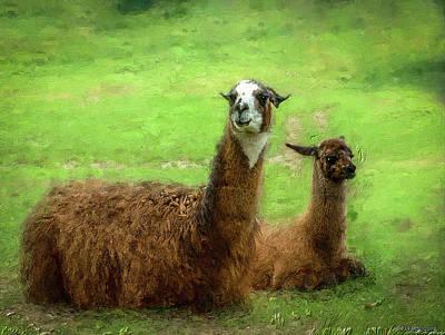 Llama Digital Art - Llamas by Ken Morris