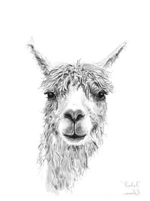 Animals Drawings - Rachel by K Llamas