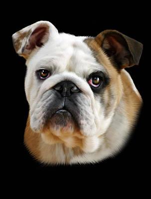 Canine Digital Art - Llewellyn by Julie L Hoddinott