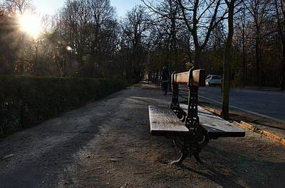 Photograph - Lnely Bench In The Park by David Resnikoff