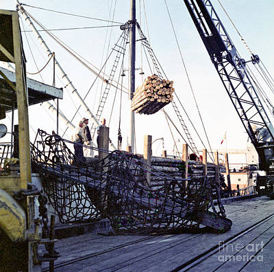 Photograph - Loading Logs At The Port Of Olympia 1966 by Ron Allen
