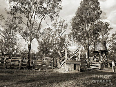 Photograph - Loading Ramp by Linda Lees
