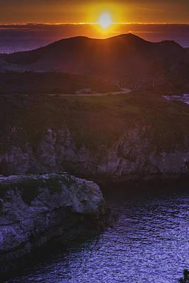 Photograph - Lobos by Cameron Howard