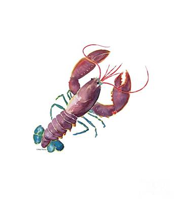 Painting - Lobster  by Melly Terpening