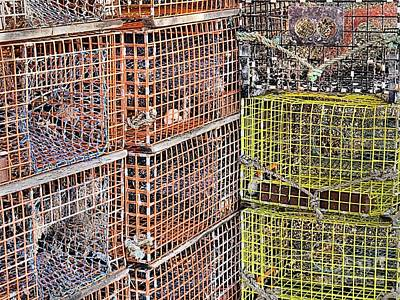 Photograph - Lobster Pots by Janice Drew