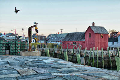 Photograph - Lobster Pots On Rockports T Wharf by Jeff Folger