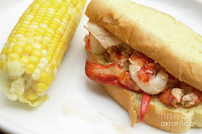 Photograph - Lobster Roll And Corn On The Cob by Edward Fielding