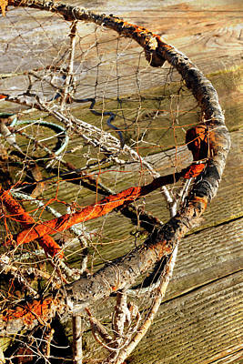 Photograph - Lobster Trap - 365-349 by Inge Riis McDonald