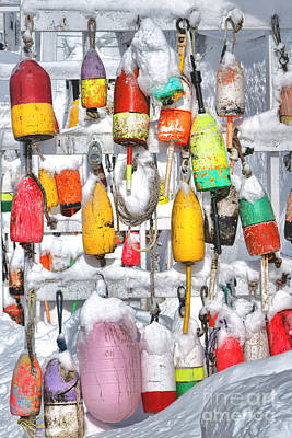 Gear Photograph - Lobster Trap Buoys Collection In Snow by Olivier Le Queinec