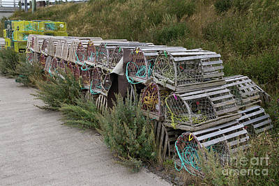 Photograph - Lobster Traps by Les Palenik
