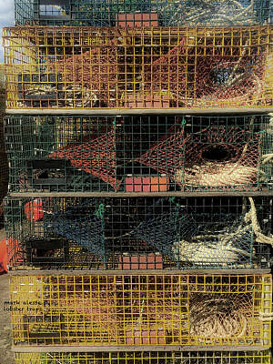 Photograph - Lobster Traps by Mark Alesse