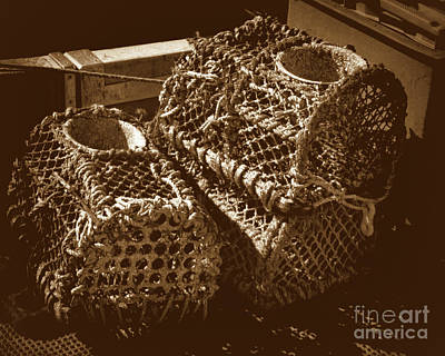 Photograph - Lobster Traps by Stephen Melia