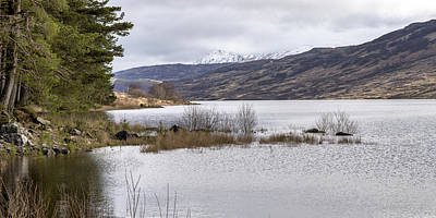 Photograph - Loch Arklet In Scotland by Jeremy Lavender Photography