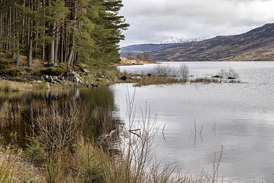 Photograph - Loch Arklet Shore by Jeremy Lavender Photography
